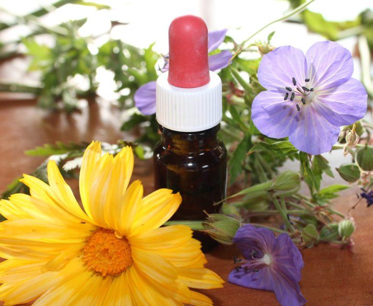 Les huiles essentielles: la nature au secours de tous les maux?